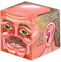 mcsweeneys-head-crate